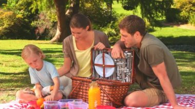 Family having a picnic — Stock Video
