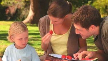 Happy family having a picnic — Stock Video