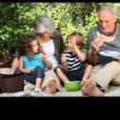 Montage of grandparents spending time and with their family — Stockvideo