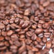 Coffee beans turning - Stock Photo