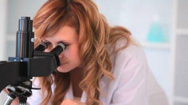 Wissenschaftler auf der suche durch ein mikroskop — Stockvideo