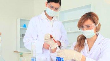 Wissenschaftler arbeiten mit reagenzgläsern — Stockvideo