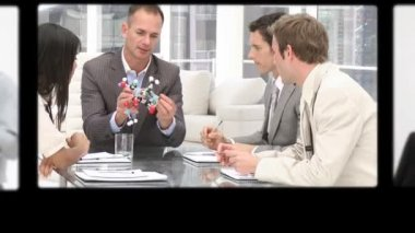 Montage of professionals exchanging ideas — Stock Video