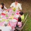 Family eating outdoors — Stock Video