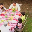 Family dining outdoors together — Stock Video