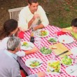 Family at barbecue from above — Vídeo de stock