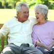 Retired couple sitting on a bench — Stockvideo
