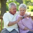 Retired couple taking a picture together - Stock Photo