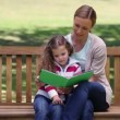 Mother and daughter looking a picture book together — Stock Video #20836451