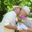 Mature couple holding a flowerpot together - Stok fotoğraf