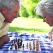 Stock Video: Two retired playing chess