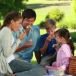 Stock Video: Family eating sandwiches during picnic