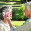 Smiling mature man giving a flower to his wife — Stock Video #20843547