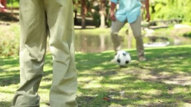 Soccer game being played by two members of a family — Stock Video