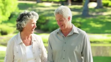 Smiling mature couple walking in front of a lake — Stock Video