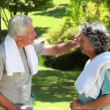 Stock Video: Mature couple wiping their foreheads with towels