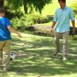 Stock Video: Smiling man playing soccer with his son