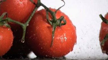 Tomatoes in super slow motion watering by droplets — Stock Video