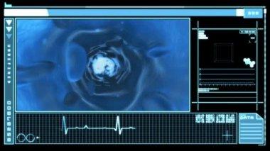 医療のデジタル インターフェイス表示血流 — ストックビデオ