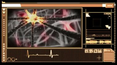 Medical digital interface showing neuron moving through nervous system — Stock Video