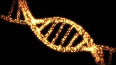 Appearing and dissapearing DNA helix — Vídeo Stock