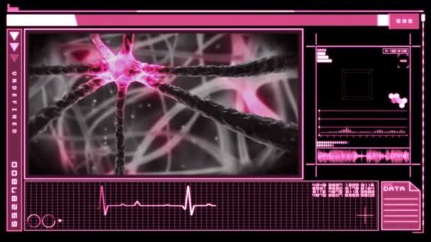 Interfaz Mostrar neuron impulsos a través del sistema nervioso — Vídeo de stock