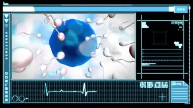 Digital interface displaying egg being fertilized — Stock Video