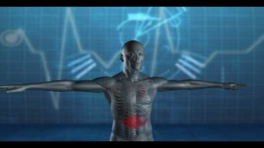 Figure of man with highlighted sections with copyspace — Stock Video