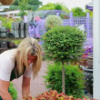 Woman working at the garden center — Vídeo de stock