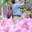 Man looking at hanging basket and smelling flowers — Stock Video