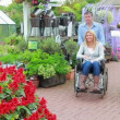Couple looking at flowers at garden centre — Stock Video #21379065