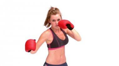 Donna boxe — Video Stock
