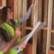 Architect discussing plan with builder - Foto Stock