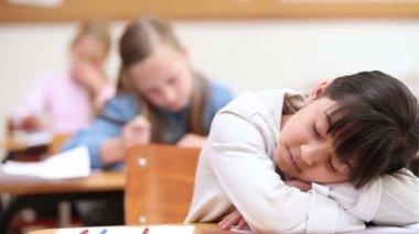Cute pupil sleeping — Stock Video