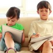 Stock Video: Serious siblings writing on notebooks