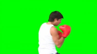 A man practises kickboxing — Stock Video