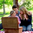 Family picnicking together — Stock Video