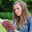 Serious young woman reading a novel - Stock Photo