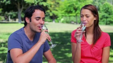 Happy couple clinking their flutes of champagne — Stock Video