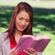Stock Video: Cheerful womreading interesting novel