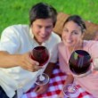 Smiling couple drinking red wine - Foto Stock