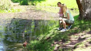 Mother and her child nourishing ducks — Vídeo de stock