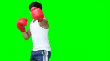 A man practising his kick-boxing — Stock Video