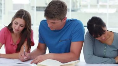 Peaceful students working on their homework — Stock Video