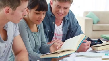 一緒に彼らの宿題をやって幸せな友達 — ストックビデオ #21745105