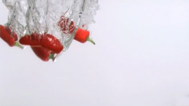 Chillies in super slow motion falling in the water — Stock Video