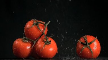 Tomatoes in super slow motion receiving raindrops — Stock Video