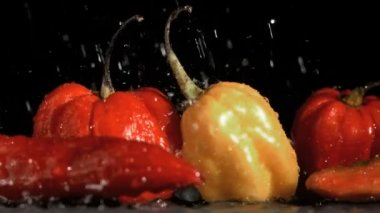 Raindrops falling in super slow motion on vegetables — Stock Video