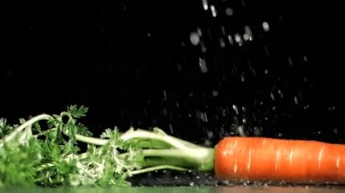 Raindrops in super slow motion falling on a carrot — Stock Video