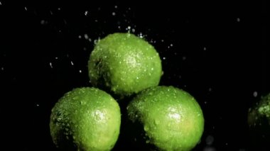 Limes in super slow motion being soaked — Stock Video